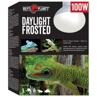 Žárovka REPTI PLANET Daylight Frosted 100W
