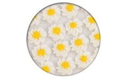 Sugar decoration - Gerberas 28 pc. white