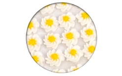 Sugar decoration - Piped swirl flowers 35 pc. white