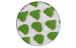 Sugar decorations - Leaves 35 pc.