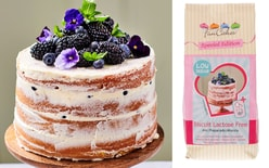 Mix for Sponge Cake Lactose Free - Low Sugar 500g