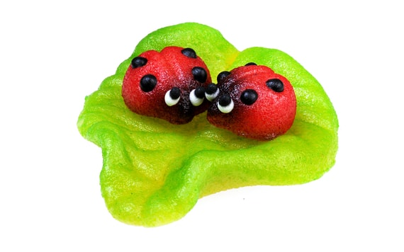 TWO LADYBIRDS ON A LEAF - MARZIPAN CAKE TOPPER