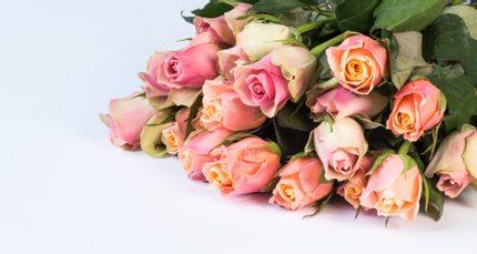 kytica ružových kvetov