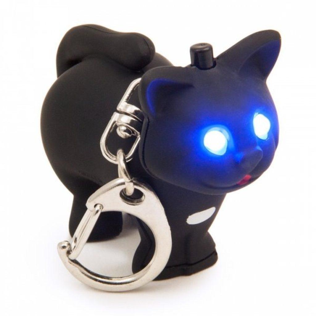 Přírodní černá kočička fotky
