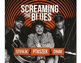 Ptaszek Matěj: Screaming the Blues, CD
