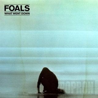 Foals - What Went Down, CD