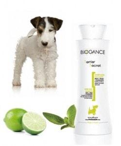 Biogance šampón Terrier secret 250ml
