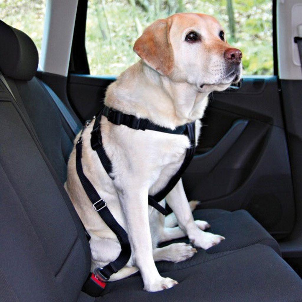 Nobby bezpečnostní postroj M pro psa do auta