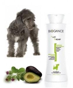 Biogance šampón Nutri Repair 250ml