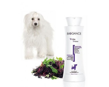 BIOGANCE ŠAMPÓN WHITE SNOW 250ML