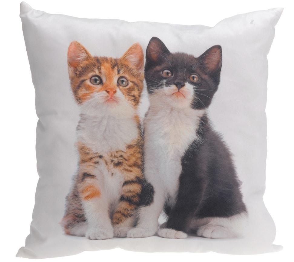 Home collection Dekoračný vankúšik mačiatka 45x45 cm - Pár koťátek