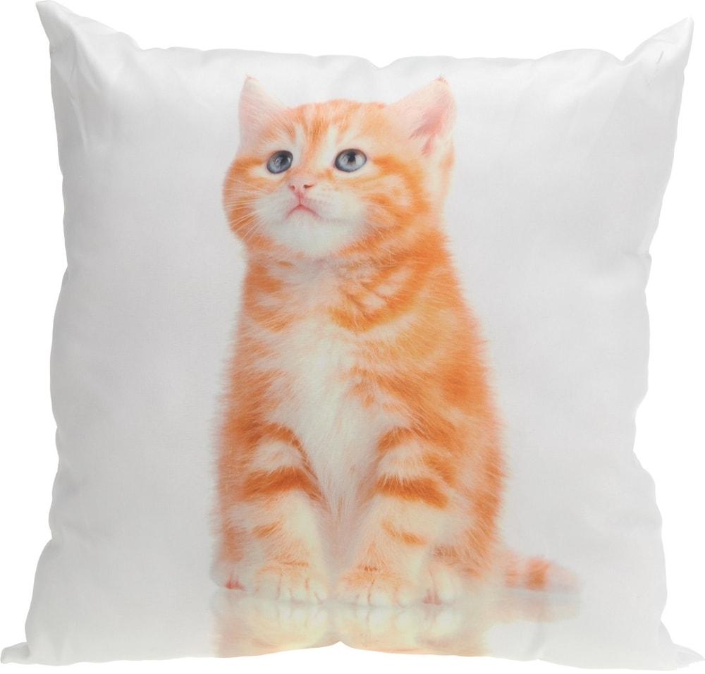 Home collection Dekoračný vankúšik mačiatka 45x45 cm - Zrzavé kotě