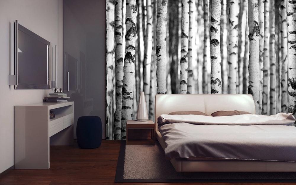 1Wall fototapeta Čiernobiely brezový les 315x232 cm