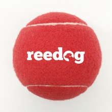 Reedog Tennisball gross