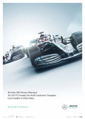 MERCEDES-AMG PETRONAS MOTORSPORT - TEAM - LIMITED EDITION - LIMITED EDITION