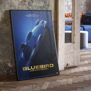 Bluebird - Donald Campbell - 1964 | Collector's Edition
