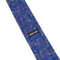 John & Paul Blue Necktie with Paisley Pattern