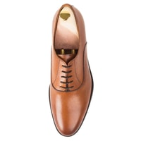 Elegant Oxford John & Paul - Brown