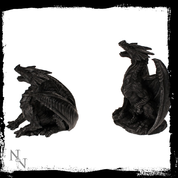 DRAGONS, DARK FURY, SET OF 2 - DRAGONS