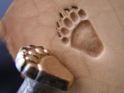 GRIZZLY BEAR TRACK, LEATHER STAMP - LEATHER STAMPS