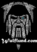 ODIN, VIKING T-SHIRT - PAGAN T-SHIRTS NAAV FASHION