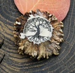 TREE OF LIFE, engraved antler pendant, scrimshaw