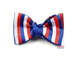 TRICOLOR Butterfly bow tie