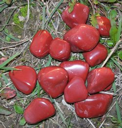 RED JASPER - gemstone