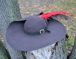 Musketeer Round Hat