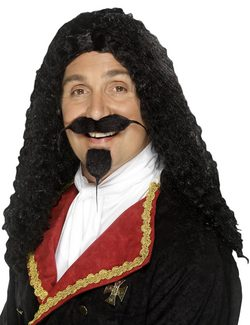 MUSKETEER WIG - costume rental