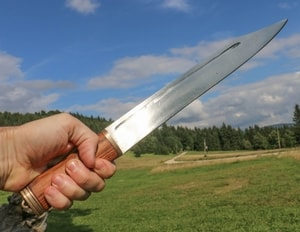 ARVID, LONG KNIFE - SEAX - SAEX KNIVES, SCRAMASAX{% if kategorie.adresa_nazvy[0] != zbozi.kategorie.nazev %} - WEAPONS - SWORDS, AXES, KNIVES{% endif %}