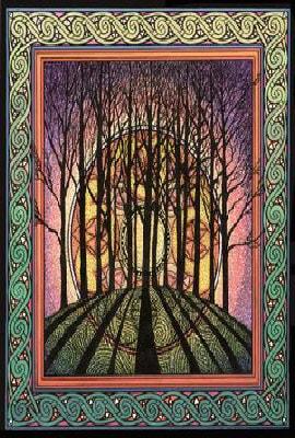 Winter solstice courtney davis greetings card wulflund winter solstice courtney davis greetings card m4hsunfo