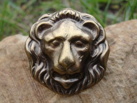 LION HEAD, pin