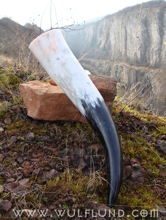 Viking Drinking Horn - 1 l