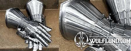 POLISHED GAUNTLETS DECORATED WITH PLASTIC STYLE