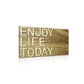 Obraz s citátom - Enjoy life today