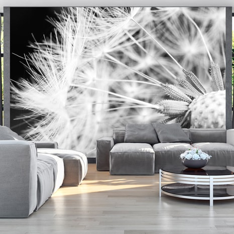 FOTO TAPETA - BLACK AND WHITE DANDELION