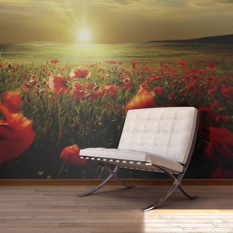 FOTO TAPETA - MORNING ON THE POPPY MEADOW