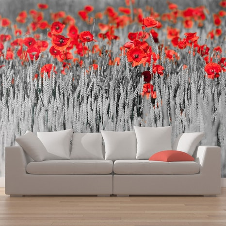 FOTOTAPET - RED POPPIES ON BLACK AND WHITE BACKGROUND
