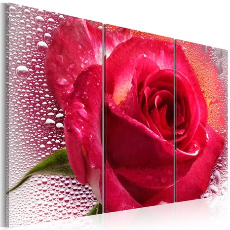 SLIKA - LADY ROSE - TRIPTYCH