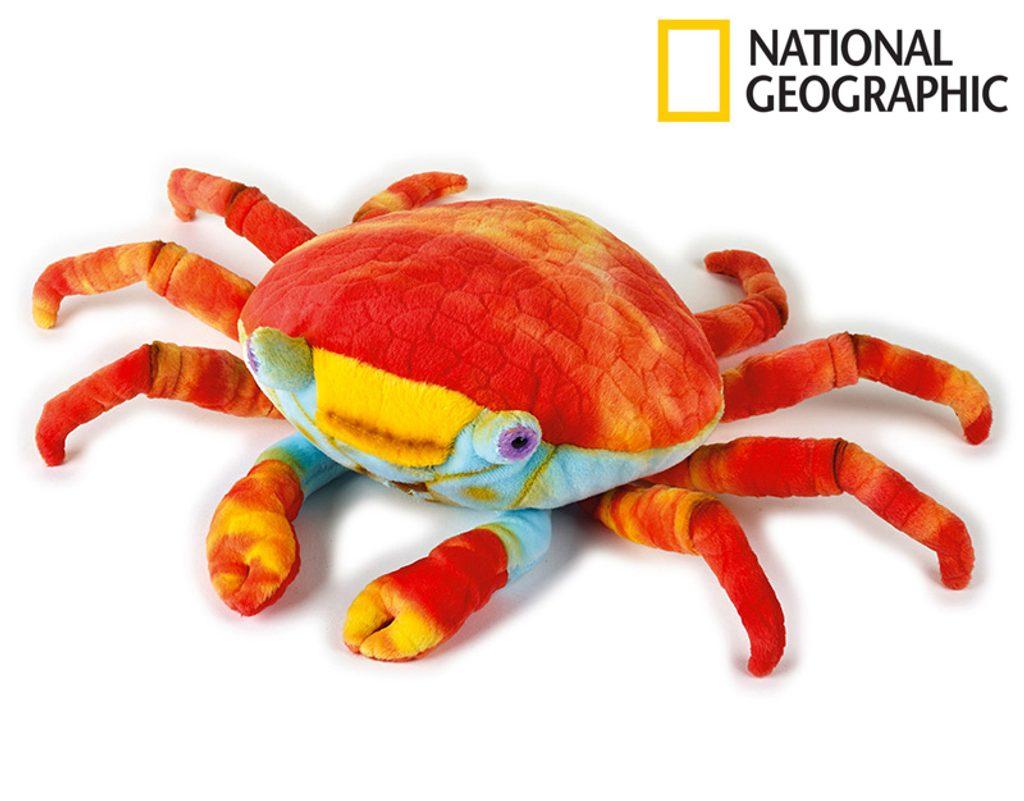 National Geografic Zvířátka z Galapág 770803 Lávový krab 47 cm, National Geographic, W011607
