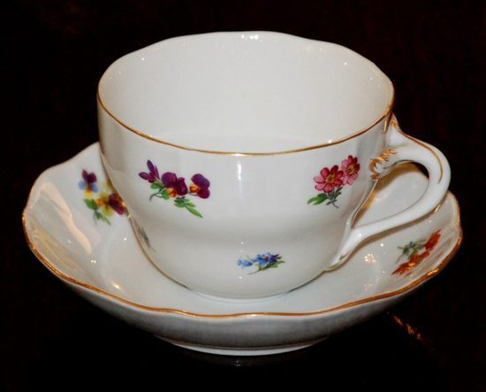 Cup and saucer B plus B 0,21 l / 14 cm for coffee, Hazenka, Cesky porcelan a.s.