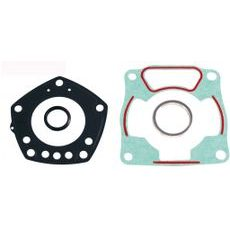 Engine TOP END gaskets RMS 100689241
